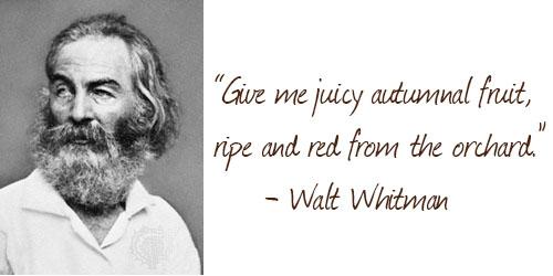 Apples - walt whitman