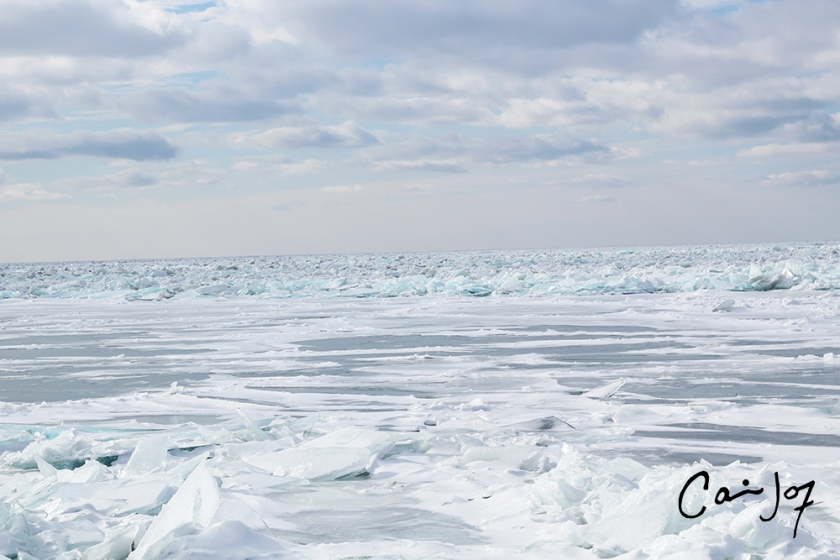 Ice Flows 2